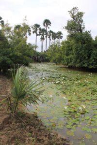 Anguili et Wendou Fodé
